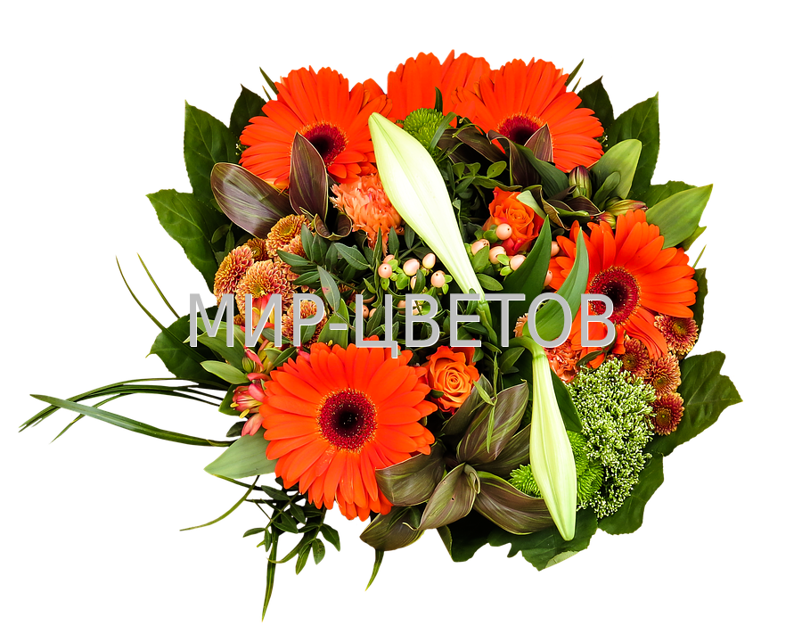 birthday-bouquet-1499170_960_720 - копия